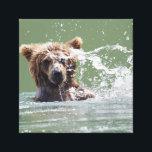 """Premium Wrapped Canvas 12x12 w/ grizzly bear cub<br><div class=""""desc"""">Premium Wrapped Canvas 12x12 w/ grizzly bear cub</div>"""