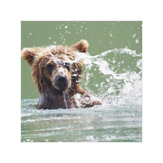 Premium Wrapped Canvas 12x12 w/ grizzly bear cub
