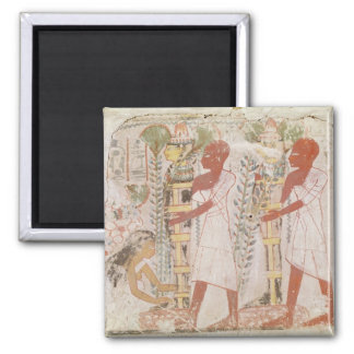 Preparation two mummies for purification ceremony 2 inch square magnet