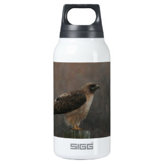 Prepare for Takeoff Insulated Water Bottle