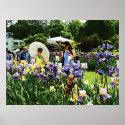 Presby Iris Garden print