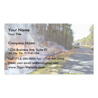Prescribed Burn at Chesapeake Marshlands National Double-Sided Standard Business Cards (Pack Of 100)