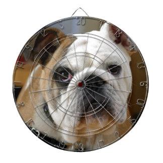 Presentación de color marrón blanquecina del perro