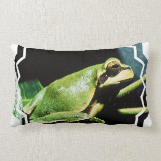Presentación de la almohada de la rana