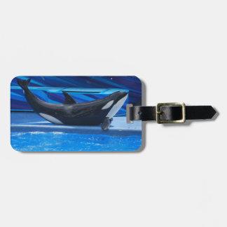 Presentación de la etiqueta del equipaje de la orc etiquetas para equipaje