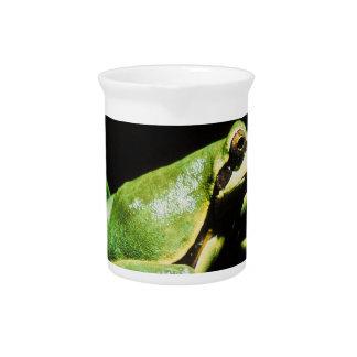 Presentación de la jarra de la rana