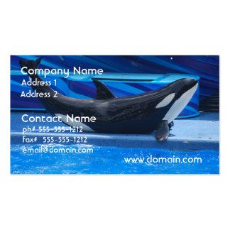Presentación de tarjetas de visita de la orca