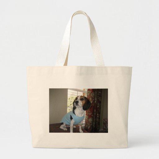 Presentación del beagle bolsa lienzo