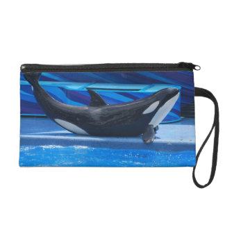 Presentación del bolso de los accesorios de la orc