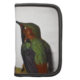 Presentación del colibrí planificador