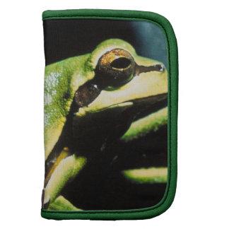 Presentación del folio de la cartera de la rana planificadores