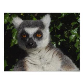 Presentación del Lemur Anuncios