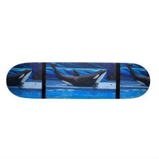 Presentación del monopatín de la orca