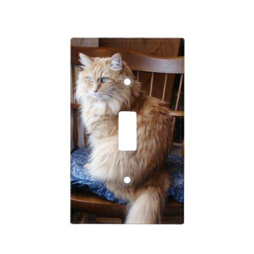 Presentación del Toc (el gato anaranjado) Placas Para Interruptor