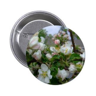 Presentado perfectamente en rosa y blanco pin redondo 5 cm
