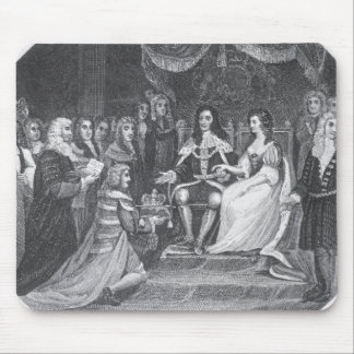 Presentation of the Bill of Rights Mouse Pad