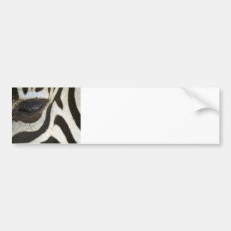 Presente blanco y negro del regalo del safari del  pegatina para auto