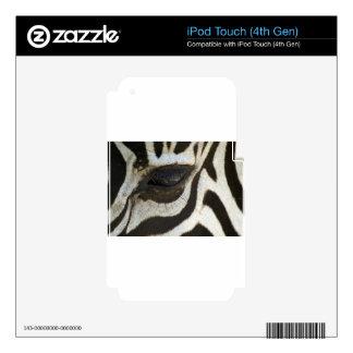 Presente blanco y negro del regalo del safari del  iPod touch 4G calcomanía