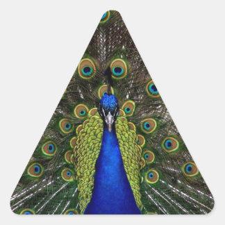 Presentes de los regalos del azul real del pavo calcomanías de triangulos