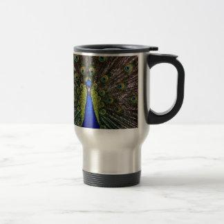 Presentes de los regalos del azul real del pavo re taza de café