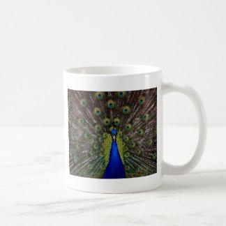 Presentes de los regalos del azul real del pavo re tazas de café