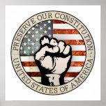 Preserve nuestra constitución posters