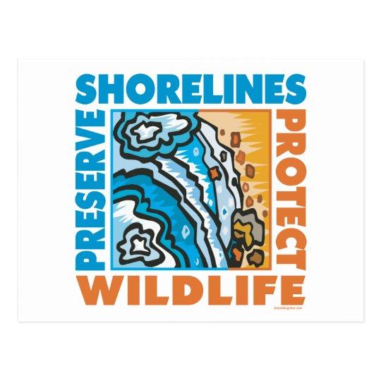 Preserve Shorelines - Protect Wildife Postcard