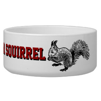 Preserve wildlife pickle a squirrell dog bowl