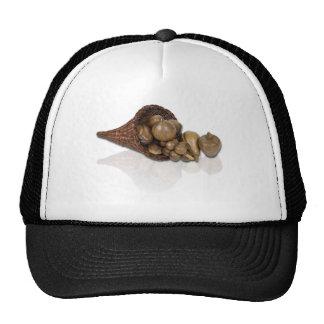 PreservedCornucopia040311 Trucker Hat