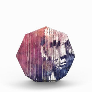 President Abraham Lincoln Abstract Award