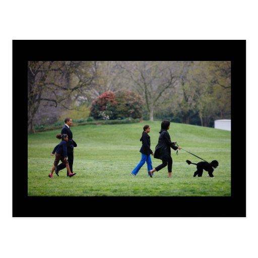 President Barack Obama & Family Post Cards