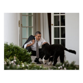 President Barack Obama with Bo Postcard