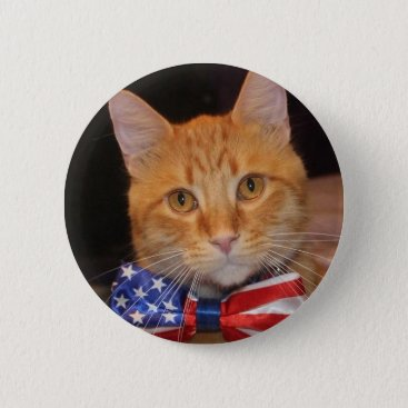 USA Themed President Bill Clinton the Cat fancy buttons! Pinback Button