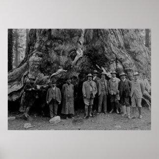 President Roosevelt and John Muir California 1903 Poster
