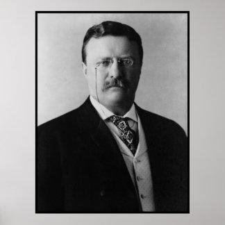 President Theodore Roosevelt Portait Poster