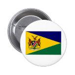 Presidente Flag de Namibia Pin