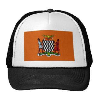 Presidente Flag de Zambia Gorro De Camionero