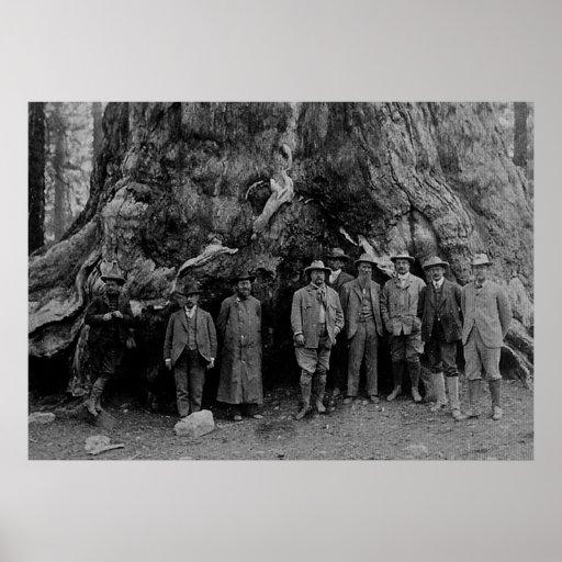 Presidente Roosevelt y John Muir California 1903 Impresiones