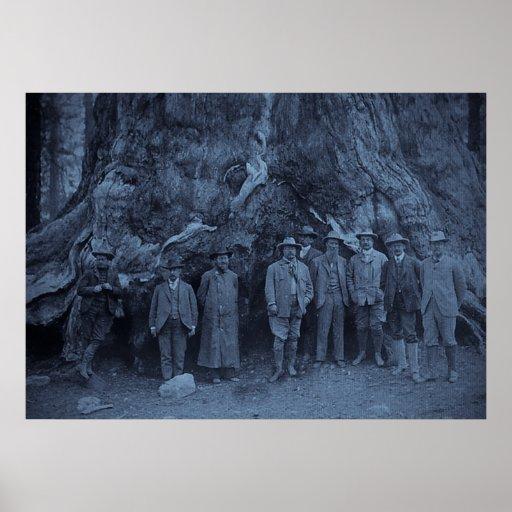 Presidente Roosevelt y John Muir California 1903 Póster