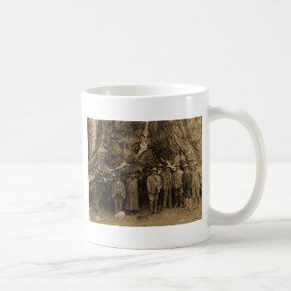 Presidente Roosevelt y John Muir (sepia) 1903 Taza De Café