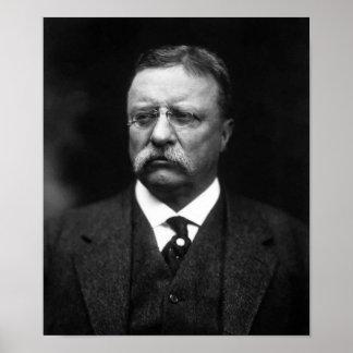 Presidente Teddy Roosevelt Póster