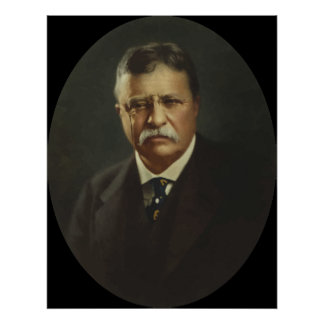 Presidente Theodore Roosevelt Posters