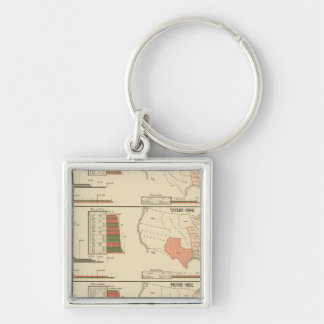 Presidential elections 1844-1856 Silver-Colored square keychain