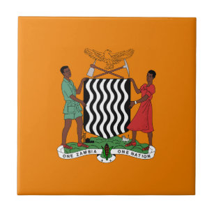 Zambia Presidential Flag Home Decor & Pets Products | Zazzle
