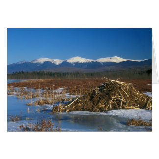 Presidential Range Mount Washington, Beaver Lodge Card