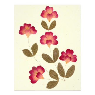 Pressed Bright Pink Tube Flowers Flyer