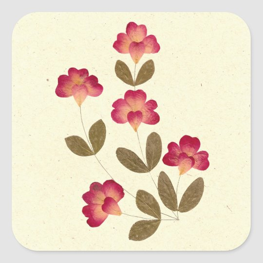 Pressed Bright Pink Tube Flowers Square Sticker