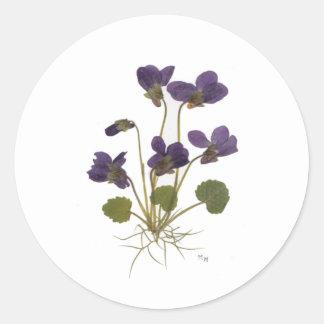 Pressed Flower Design Classic Round Sticker