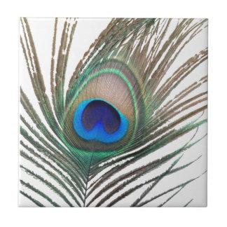 Prestigious Peacock Ceramic Tile
