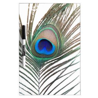 Prestigious Peacock Dry Erase Board